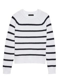 Banana Republic Chunky Ribbed Stripe Sweater