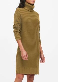 Banana Republic Chunky Turtleneck Sweater Dress