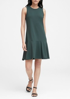 Banana Republic Knit Drop Waist Dress