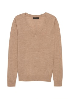 Banana Republic Washable Merino Wool V-Neck Sweater