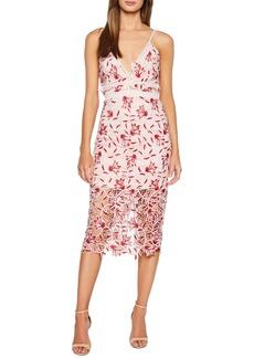 Bardot Coco Lace Dress