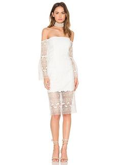 Bardot Geo Lace Dress in White. - size Aus 10 / US S (also in Aus 14 / US L,Aus 8 / US XS)