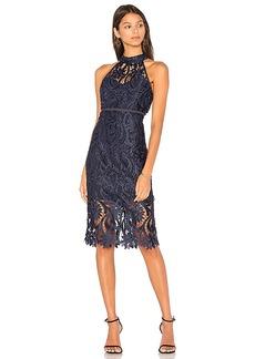 Bardot Isa Lace Dress in Navy. - size Aus 10 / US S (also in Aus 12 / US M,Aus 14 / US L,Aus 8 / US XS)