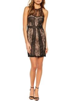 Bardot Jenny Splice Sheath Dress