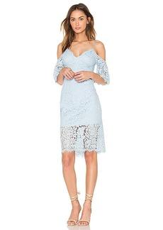 Bardot Karlie Lace Dress in Blue. - size Aus 10 / US S (also in Aus 12 / US M,Aus 14 / US L,Aus 8 / US XS)