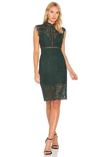 Bardot Lace Panel Dress in Green. - size Aus 10 / US S (also in Aus 12 / US M,Aus 14 / US L,Aus 8 / US XS)