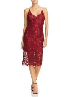 Bardot Midi Lace Dress