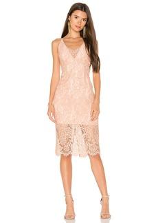 Bardot Pencil Lace Midi Dress