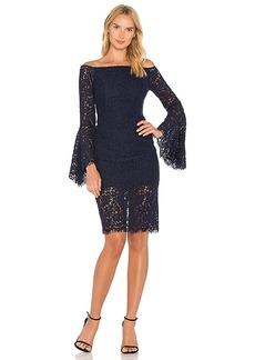 Bardot Solange Lace Dress in Navy. - size Aus 10 / US S (also in Aus 12 / US M,Aus 8 / US XS)