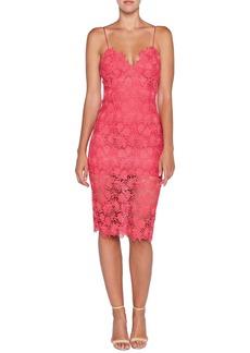 Bardot Tayla Lace Cocktail Dress