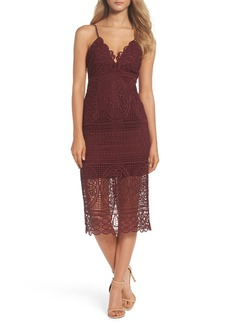 Bardot Versailles Lace Pencil Dress