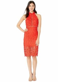 Bardot Gemma Halter Dress