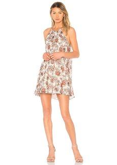 BB Dakota Alissa Dress