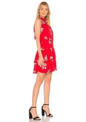 BB Dakota Cadence Dress