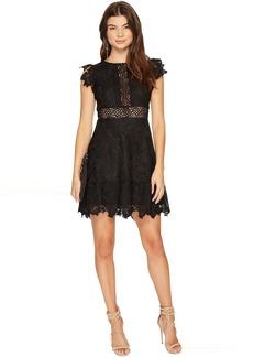 BB Dakota Calvin Scalloped Trim Lace Dress