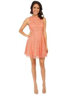BB Dakota Lotte Dress