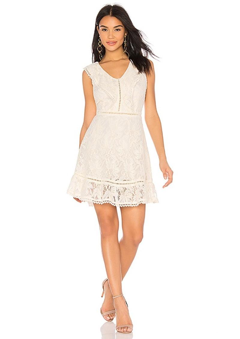 BB Dakota Rease Dress