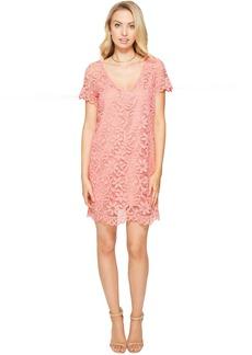 Rene V-Neck Lace Shift Dress
