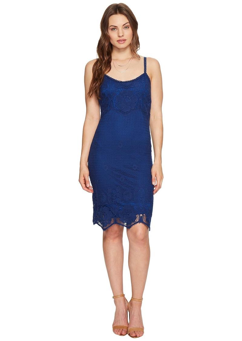 BB Dakota Cassia Scallop Lace Dress