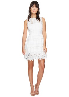 BB Dakota Elissa Lace Fit N Flare Dress