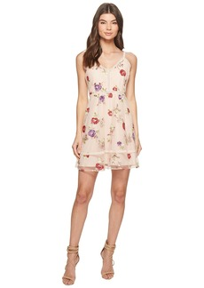 BB Dakota Gemma Embroidered Fit and Flare Dress