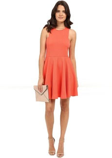 BB Dakota Kennet Textured Knit Fit and Flare Dress