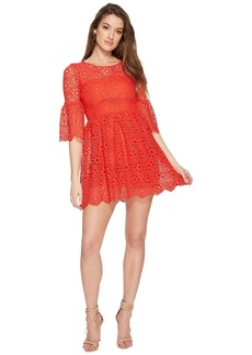 BB Dakota Lauper Floral Eyelet Fit and Flare Dress