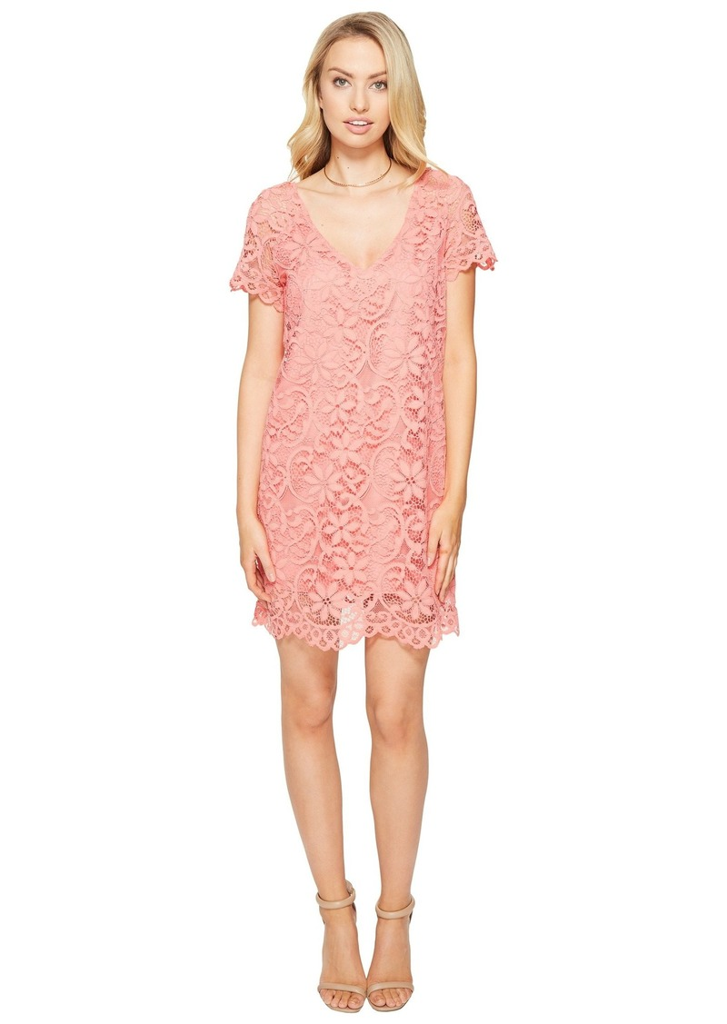 Bb Dakota Rene V Neck Lace Shift Dress Dresses