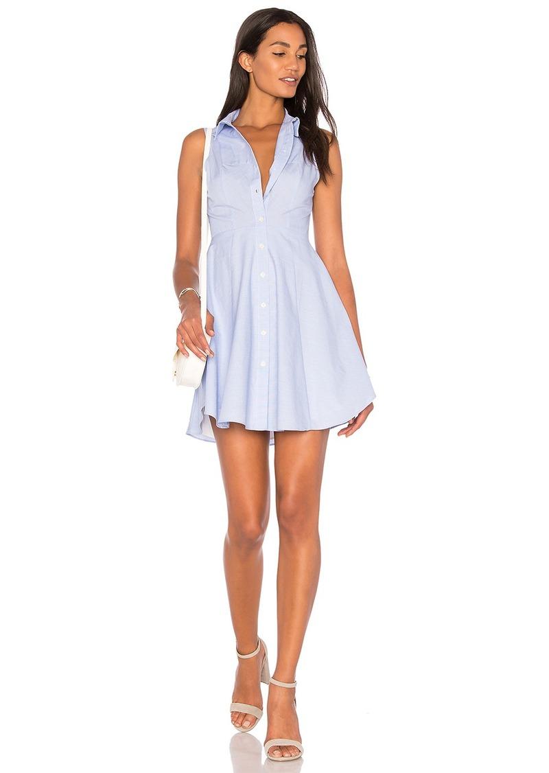 BCBG Collared City Dress