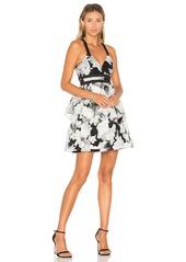 BCBGeneration Waist Strap Dress