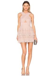 BCBGMAXAZRIA Alissa Dress in Blush. - size 10 (also in 2,4,6)