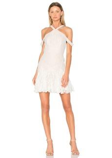 BCBG Max Azria Leighann Dress