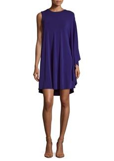 BCBGMAXAZRIA Pullover Dress