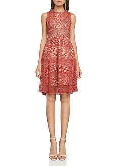 BCBG Max Azria BCBGMAXAZRIA Sleeveless Lace Dress