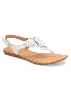 Born D Anna Leather Sandals
