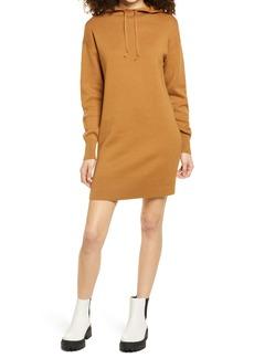 Brass Plum Long Sleeve Hoodie Sweater Dress