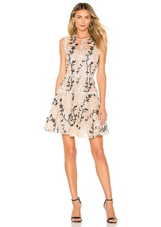 Bronx and Banco Cloe Mini Dress