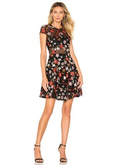 Bronx and Banco Embroidered Floral Mini Dress