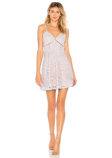 by the way. Maci Lace Skater Dress