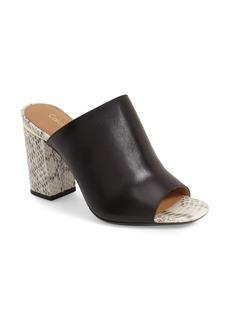 Calvin Klein 'Cice' Mule Sandal (Women)
