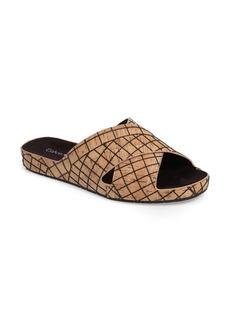 Calvin Klein Maleena Slide Sandal (Women)