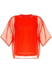Calvin Klein sheer short sleeve top