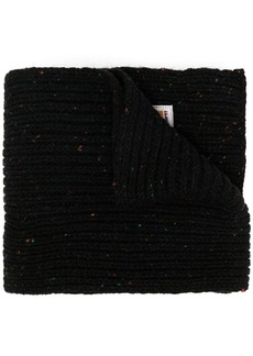 Carhartt Anglistic ribbed knit scarf
