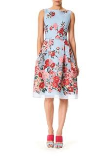 Carolina Herrera Sleeveless High-Neck Floral-Print Day Dress
