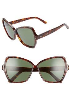 CELINE 64mm Oversize Butterfly Sunglasses