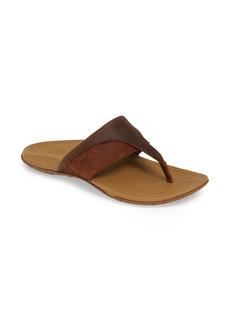 Chaco Hermosa Flip Flop (Women)