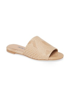 Charles David Spinner Slide Sandal (Women)