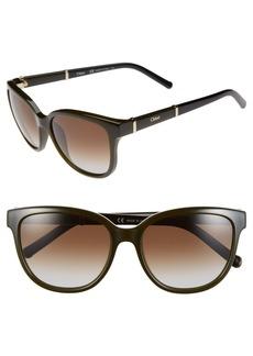 Chloé 'Daisy' 54mm Sunglasses