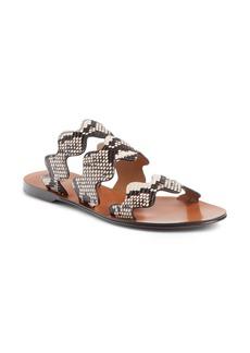 Chloé Lauren Scalloped Slide Sandal (Women)