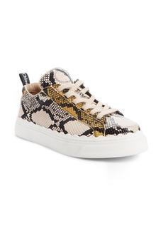 Chloé Lauren Sneaker (Women)